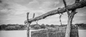 pasture pond, cattlewomen